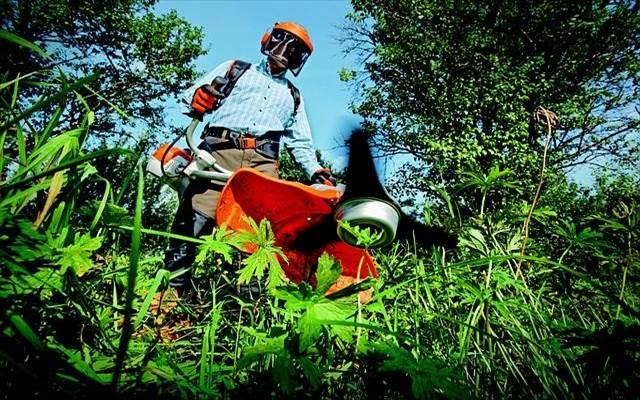 草刈りを業者に依頼する費用の相場