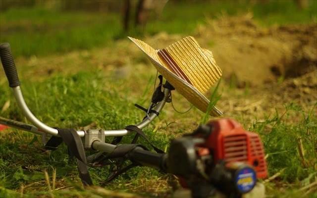 雑草対策で一番効果がある方法はなに?