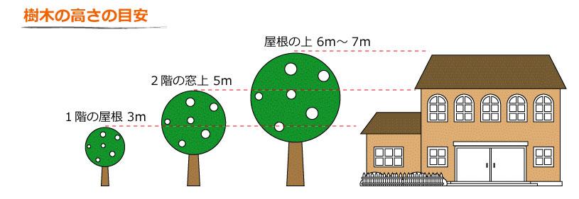 庭木の高さの目安