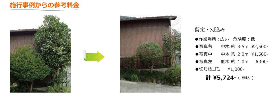 植木屋の剪定料金の施工事例