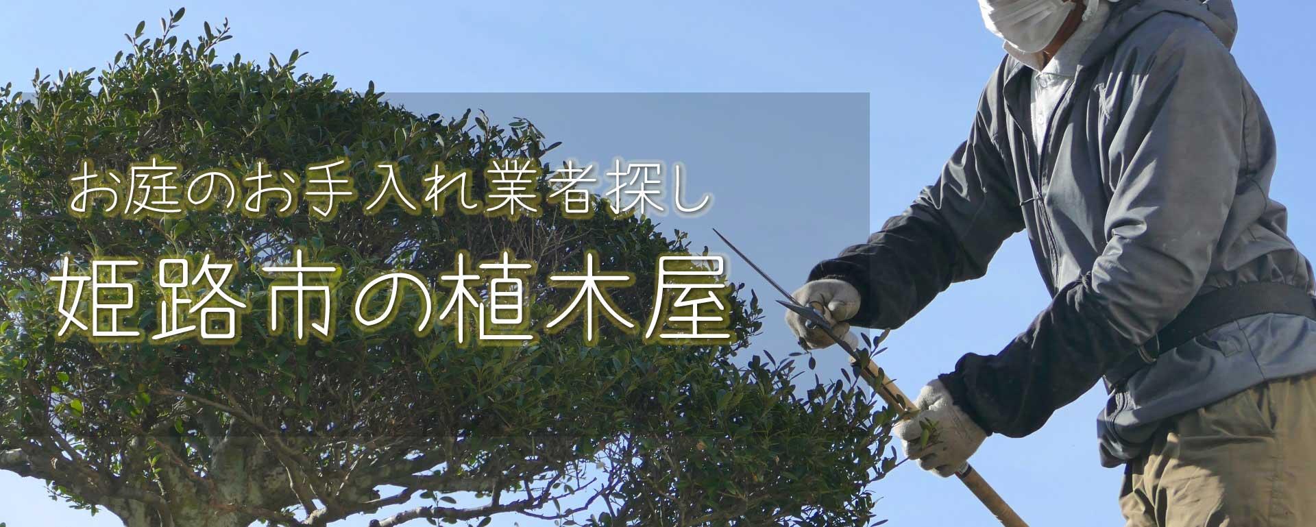 見積り無料の姫路市の植木屋・業者によって料金はバラバラ