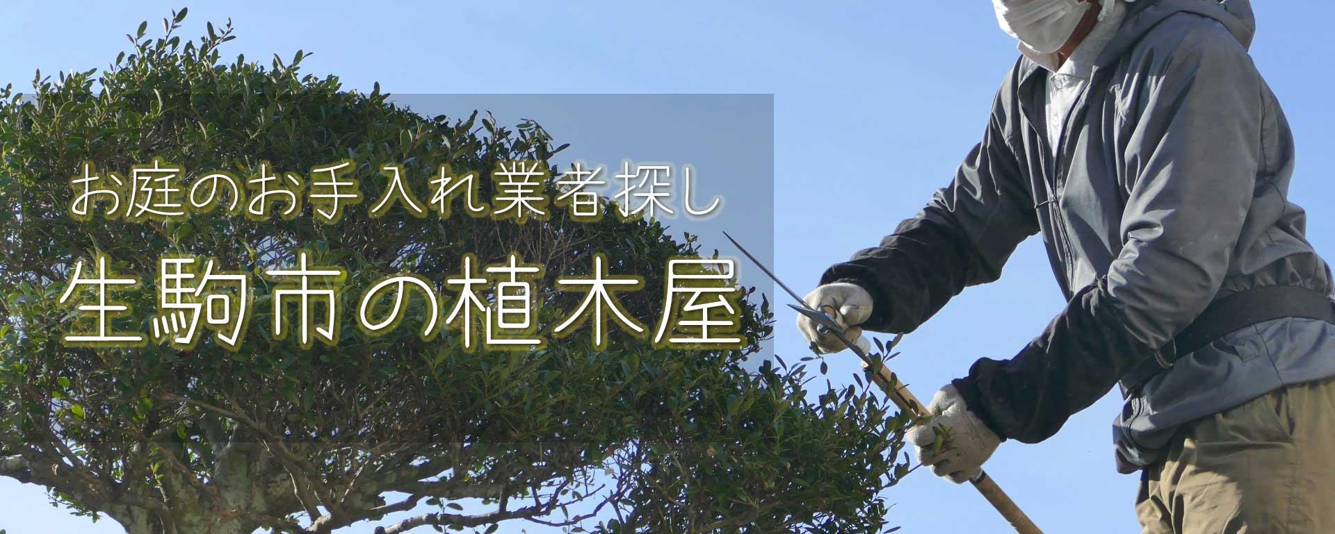 見積り無料で生駒市の植木屋