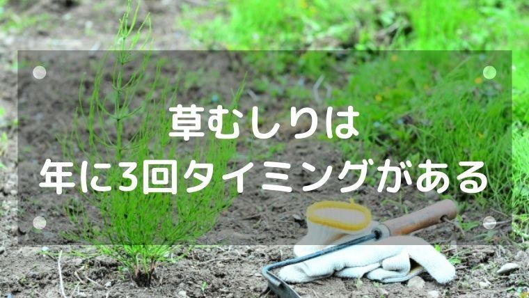 草むしりは3月、6月、9月にする