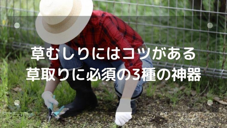 草むしりにはコツがある・草取りに必須の3種の神器
