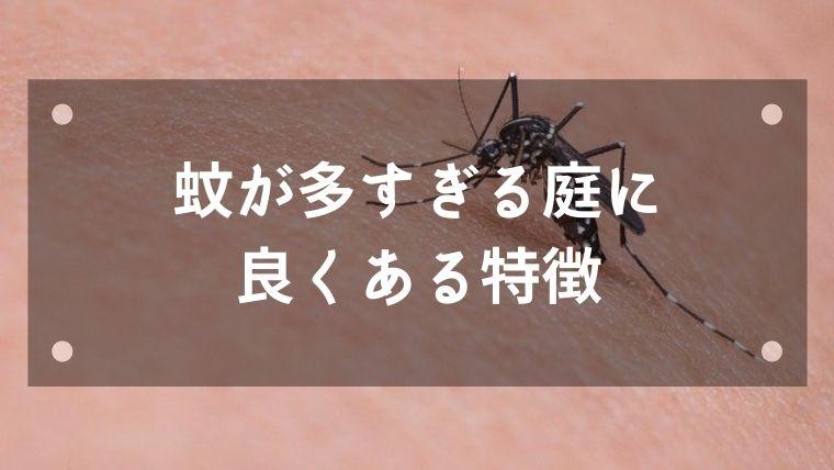 蚊が多すぎる庭に良くある特徴