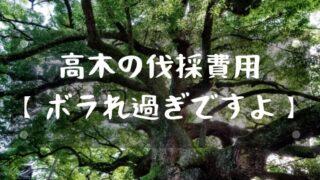 高木の伐採・大木になったクスノキの伐採費用【ボラれ過ぎですよ】